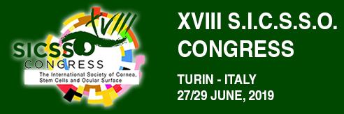 S.I.C.S.S.O. 2019 – Turin, Italy